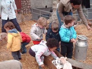 Crèches et assistantes maternelles
