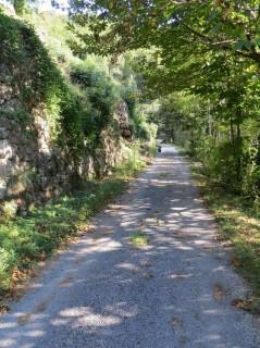 chemin-de-Pereyres